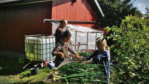 gardening-20200710 103536