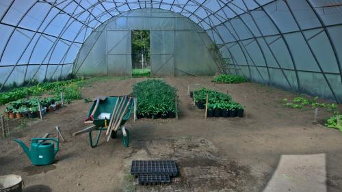 gardening-DSC08998