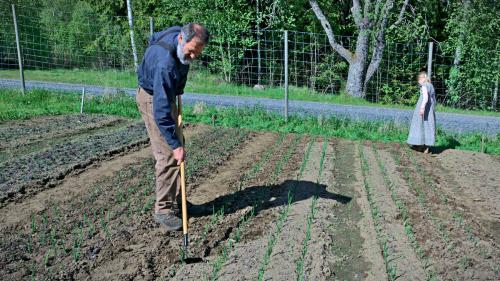 gardening-DSC09002