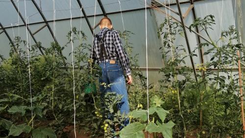 gardening-IMG 20200719 171042