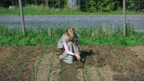 gardening-DSC09007