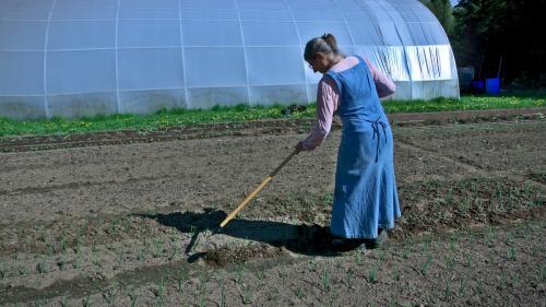 gardening-DSC09012