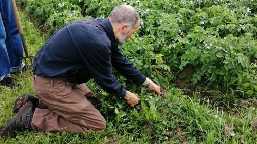 gardening-IMG 20200719 155516