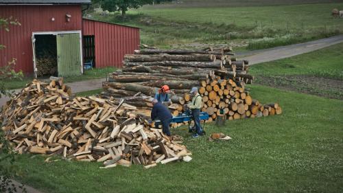 wood-20210705 0009